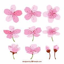 fiori disegni i fiori di ciliegio con disegni diversi scaricare vettori gratis