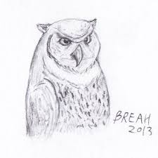 great horned owl sketch drawing u2013 art by breah