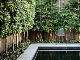 landscape u0026 garden design in melbourne nathan burkett design