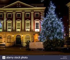 christmas tree outside lights christmas lights decoration