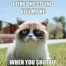 Memes With Sound - silence meme make sound memes comics pinterest meme