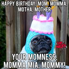 Happy Birthday Pug Meme - 20 memorable happy birthday mom memes sayingimages com