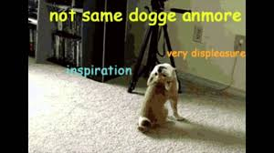 Perspective Meme - such perspective doge meme youtube