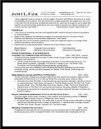 Sample Marketing Consultant Resume Examples Resume Examples For Business Template Sample Business