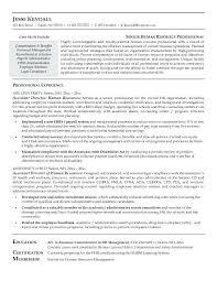 entry level hr resume hitecauto us