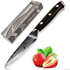top 10 best paring knives in 2017 reviews
