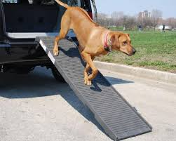 top 5 best dog ramps for water in 2017