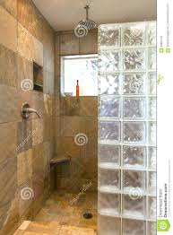 inside view of shower with custom glass block wall and decorative