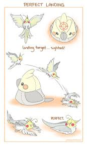 cartoon cockatiel cockatiel clipart lutino pencil and in color cockatiel clipart