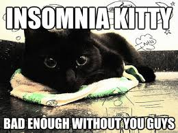 Insomnia Meme - insomnia kitty bad enough without you guys damn you camile