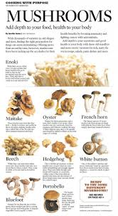141 best edible wild plants mushrooms images on pinterest