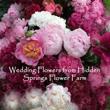 fresh cut flowers fresh cut flower peonies
