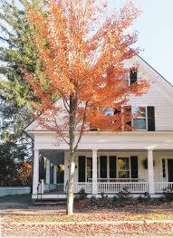 chic halloween decor autumn future and house