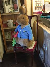 peter rabbit picture house tailor gloucester