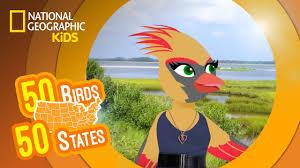 virginia feat rapper mc carla the cardinal 50 birds 50