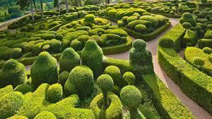 boxwood hedge garden ideas landscape design
