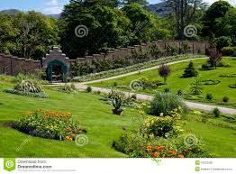 victorian garden walls kylemore abbey u0026 victorian walled garden in county galway stock