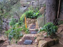 Bill Mollisons Permaculture Design Principle Use Onsite Material - Backyard permaculture design