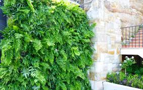 Wall Gardens Sydney by Gallery Think Vertical Garden Solutions