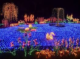 Botanical Garden Bellevue The Garden D Lights Event At The Bellevue Botanical Garden