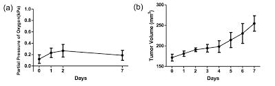 reducing tumour hypoxia via oral administration of oxygen nanobubbles