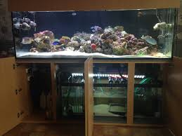marine aquarium 72x24x24 with doors open modern cabinet design