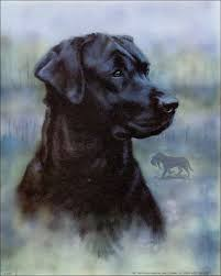 Black Lab Meme - black lab dog paper tole 3d kit size 8x10 8 470