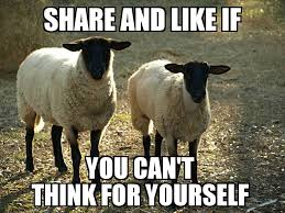 Sheeple Meme - sheeple meme picture ebaum s world
