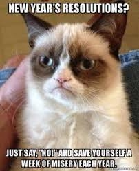Grumpy Cat New Years Meme - new year s resolutions just say quot no quot and save yourself