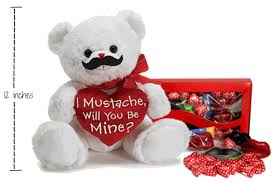 be mine teddy i mustache will you be mine plush