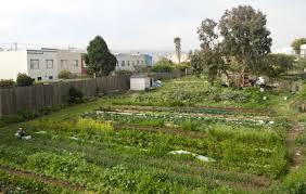 Urban Gardens San Francisco - help save little city gardens san francisco u0027s last commercial