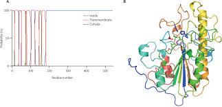 emergence of plasmid mediated colistin resistance mechanism mcr 1