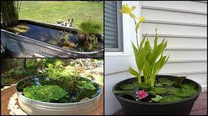 Backyard Small Pond Ideas Decor Of Small Backyard Fish Pond Ideas Awesome Aquarium And Fish
