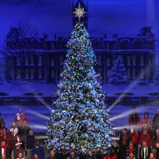 everest fir tree with led lights 17