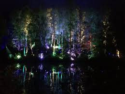 enchanted forest of light tickets the enchanted forest in pitlochry is a must see if you are in