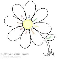 flower clipart color collection clip art coloring pages