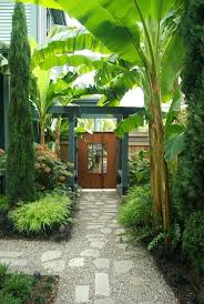 tropical landscaping ideas for backyard tropical landscaping ideas