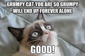Good Grumpy Cat Meme - grumpy cat you are so grumpy cat meme cat planet cat planet