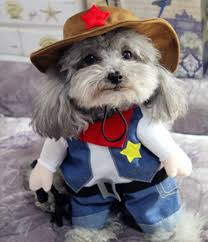 Yorkie Costumes Halloween Pet Clothes Small Dog Coats Funny Halloween Dog Costumes Puppy