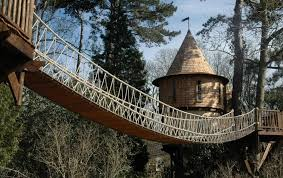 Tree House Home Building Livable Tree Houses Best House Design