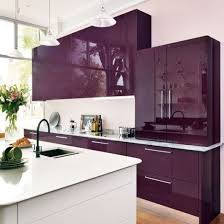 Purple Cabinets Kitchen | modern kitchen color choices purple kitchen kitchen cabinetry and