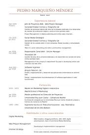 web project manager resume samples visualcv resume samples database