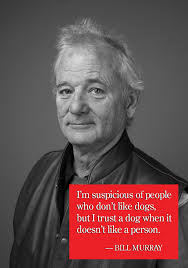 Bill Murray Memes - bill murray people and dog quote