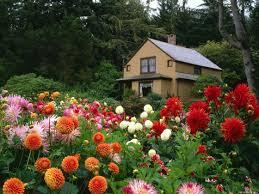 flower garden design free garden inspirations