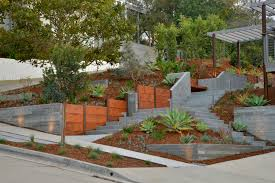 Mid Century Modern Landscaping by Point Loma Mid Century Modern Envision Landscape
