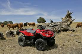 kingquad 400 4x4 manual 2016 springwood suzuki