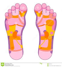 Foot Reflexology Map Foot Reflexology Pink Stock Vector Image 40895415