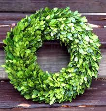 preserved boxwood wreath preserved boxwood wreath 14 inch