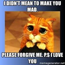 Are You Mad At Me Meme - i didn t mean to make you mad please forgive me p s i love you
