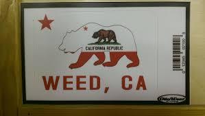 California Flag Bear Weed California Bear Flag Sticker Decal Bear Flag Museum